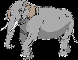 elephant-24732_640