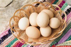 卵 賞味期限