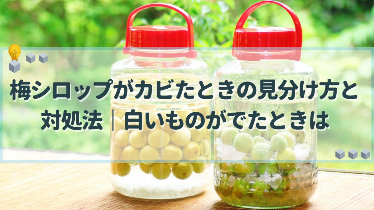 梅シロップ カビ