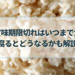 塩麹 賞味期限切れ