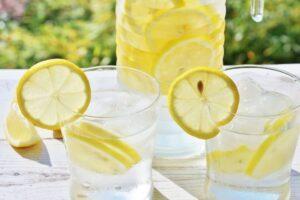レモン 食べ方
