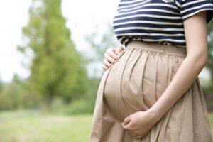 レタス 妊婦 適量