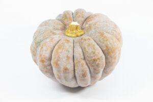 かぼちゃ 栄養成分