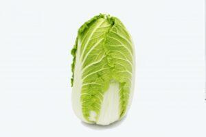 サンチュ 代用 白菜