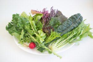 水菜 食べ過ぎ ビタミンC