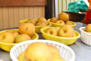 梨 食べ過ぎ 適量