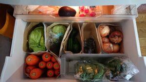 白菜 腐る 冷蔵庫