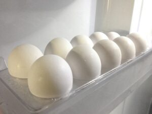 卵 腐る 保存方法