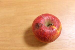 りんご しわしわ 食べられる