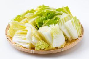 白菜 冷凍 何日