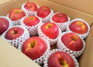 りんご 腐る 箱