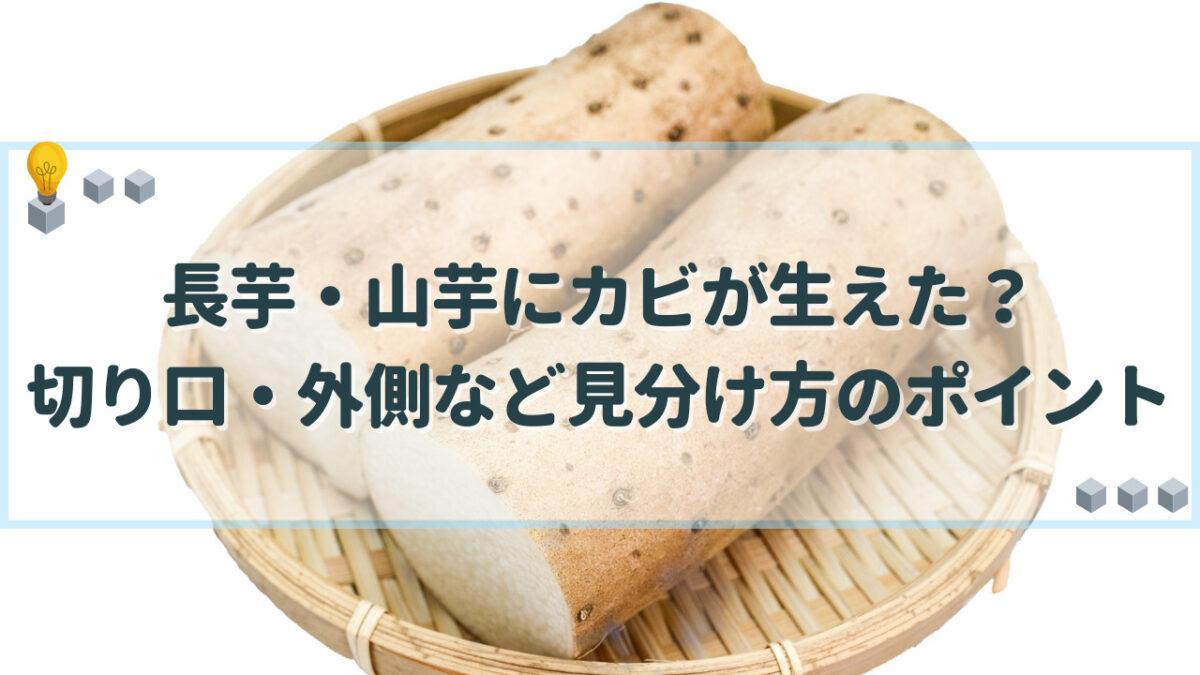 長芋 カビ